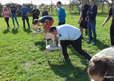 Kostanjev piknik 2018 (2)